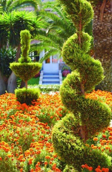 Sun Beach Gardens